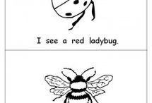 Insects Theme