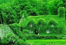 Green Places / Be inspired by these calming green destinations.