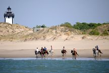 Rando Cheval en France / Nos randonnées à cheval et stages en France - http://www.randocheval.com/Programmes/Pages-Pays/france-cheval-randonnee-aventure-voyage-rando.html