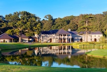 Golf / As host to the Irish Open in 2001, 2002 and 2014, Fota Island Golf Club developed an eminent reputation when it comes to providing an internationally renowned, championship-standard golfing environment. A traditionally styled yet challenging venue with 27 holes, Fota Island Golf Club is maintained to the very highest of standards at all times, ensuring that you benefit from year-round golfing enjoyment on your island haven.