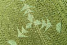 2.016 Crop Circles / Circulos de las Cosechas  año 2.016