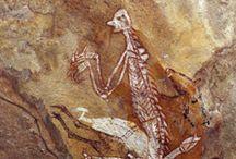 Australia djulirri rock art