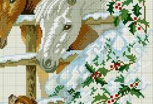 konii