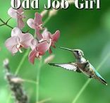 Just An Odd Job Girl serialisation