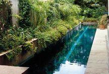 Big house pool and garden