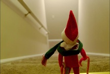 elf on the shelf / by Holly Quinlan