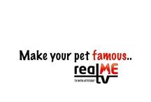 Real Pets