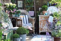 Wiejski ogród. Cottage Garden