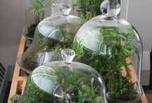 Gardening(ガーデニング) / 庭造りのアイデア