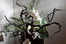 ikebana / flowers and other stuff to decorate Japanese spaces