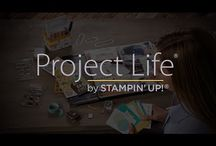 Project Life with Stampin' Up! & Stempeleule / Gallerie mit Inspirationen rund um Project Life (c) Becky Higgens und Stampin' Up!