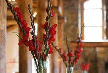 Wedding flowers & floral beauties / Wedding Flowers