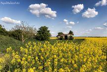 Hungarian landscapes