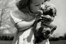 Awwww...So Sweet / by Dusty Lann