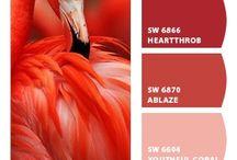 А color scheme