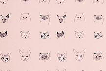 Čiči meow