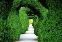 Cool places / by Jaime RispoliRoberts