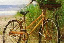 Sun, sand, Surf!! / Windsurf, Sun, Beach, Fun, Beauty