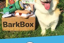 Subscription Boxes for Pets
