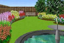 Backyard/Garden