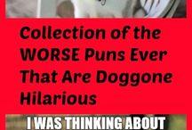 Jokes puns