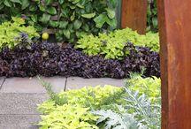 Carport Garden Bed