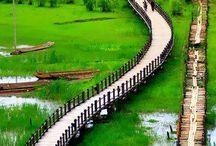 Chine avec les enfants - Voyage en famille
