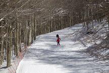 Abgefahren: Skigebiete und Geheimtipps / Hier gibt es Insider-Tipps zu Skigebieten