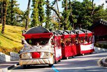 รถรางหัวมังกร (Hwaseong Trolley)