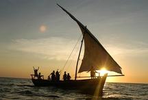 Pemba Island - Tanzania