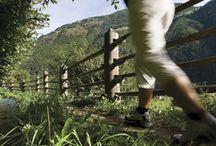 Südtirol Balance / Südtirol sucht Aussteiger auf Zeit. Südtirol sucht dich #SüdtirolBalance #vistilana