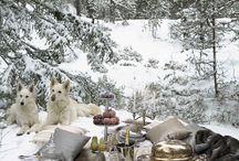 Pic nic sulla neve / Ispirazioni