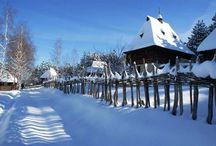 Zlatibor / Zlatibor, planina