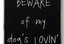 Sayings - Signs - Stuff Like That