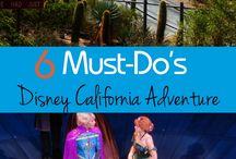 Disney's California Adventure / Information on Disneyland's California Adventure Park in Anaheim, California.
