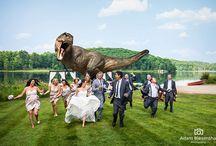 Fun and Zany Wedding Ideas / Fun and Zany Wedding Themes, Ideas and Tips. http://www.preciousvows.com/-precious-vows-wedding-blog/halloween-wedding-theme-ideas-and-tips