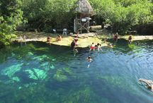 Cenotes of the Riviera Maya