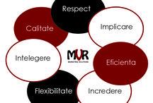 Lumea noastra / Lumea MVR Marketing Solutions