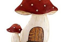 Cogumelos - Mushroom