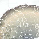 Neuroscience and Education / by Kelly Masters