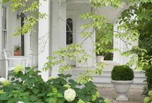 Porches, Patios, and Plants