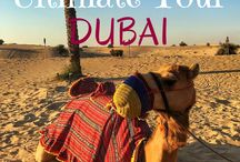 Best of Eatlivetraveldrink / Blogs, Photos, and all things surrounding my travels <3