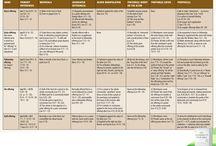 Bible Charts - NIV Zondervan Study Bible / by NIV Bible by Zondervan