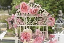 Birdcages <3