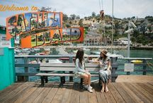 Local Gossip / What's the word on Taste of Catalina Food Tours?  You've come to the right place.  Here's what they're saying about us... Learn more: catalinafoodtours.com