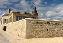 Château de Candale / visite du vignoble et des chais au Château de Candale à Saint Emilion Bordeaux Réservez avec winetourbooking.com