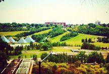 Edmonton / Restaurants, shops and events in our hometown of Edmonton, Alberta.