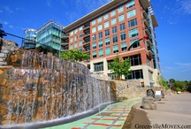 tRavEl - sOUth CaroLINa - GREENviLLe / by the mother t