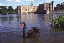 Romantic Spots / In preparation for #ValentinesDay we have picked some of our favourite romantic spots and photos...
