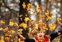 PM Autumn